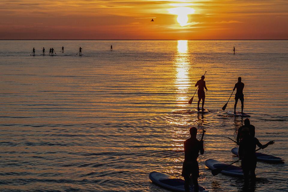 paddel surfare