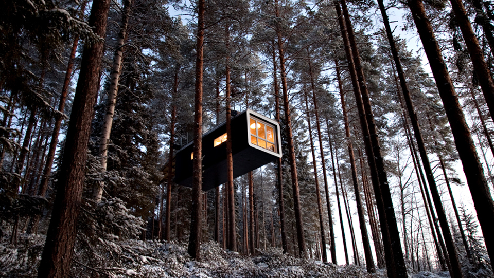 Tree hotel-theCabin